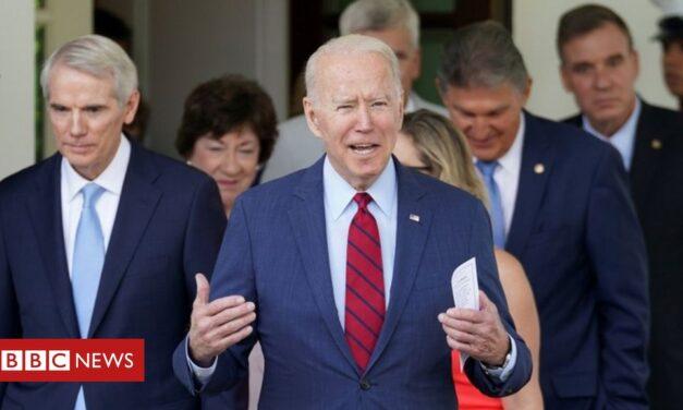 Biden backs bumper economic stimulus bill – with big caveat